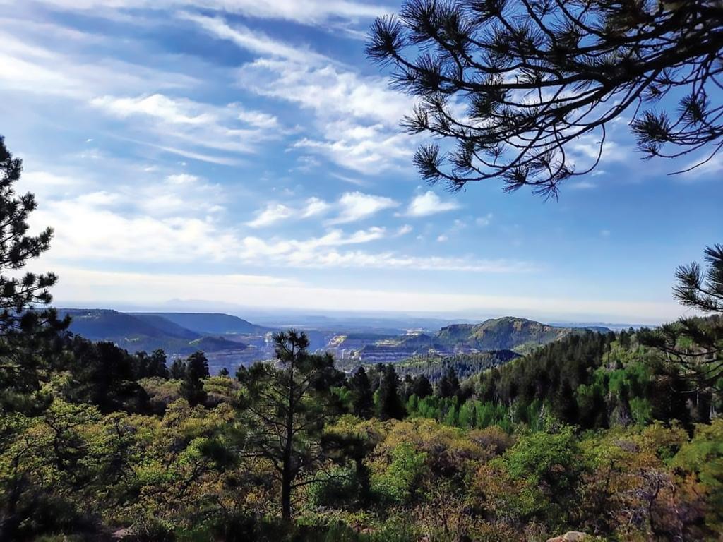 A beautiful view overlooking Arch Canyon. Kaylee Dalton photo