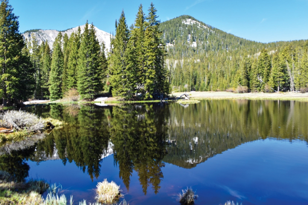 Twice the beauty: A clear reflection in Medicine Lake.  Tiffany Smith photo