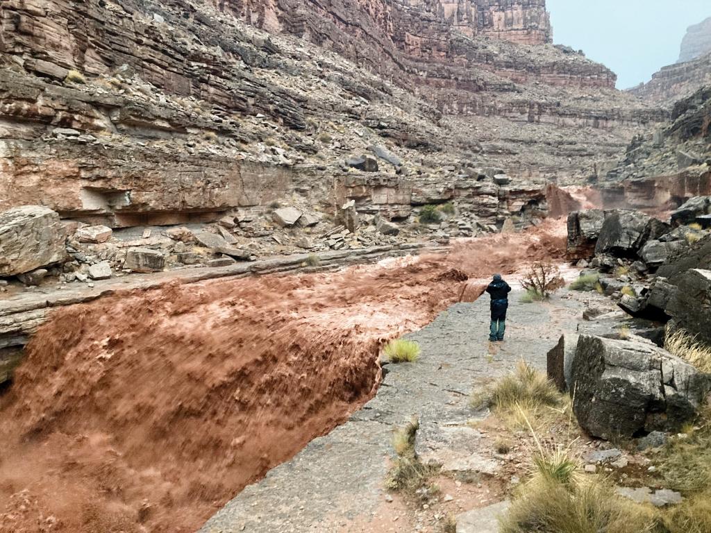 Monsoon rains produced an impressive flash flood at the mouth of Slickhorn Canyon.  Josh Sherrock photo